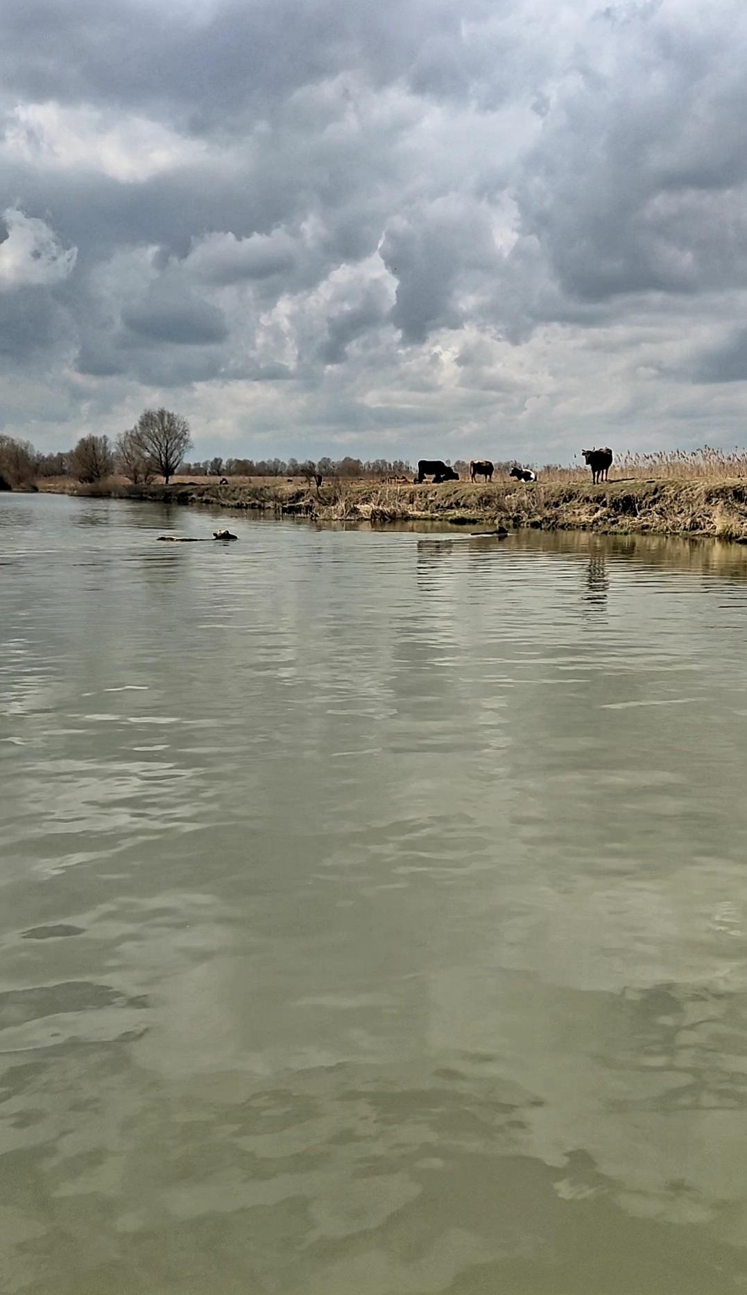 La capăt de Dunare